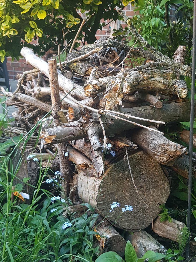 Totholzhaufen im Garten